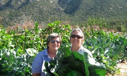 Garden Guru: The Woman's Garden