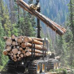 Making a difference at Monarch Pass: Project salvages beetle-kill trees on steep slopes to reduce wildfire risk, protect water resources