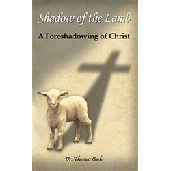 Shadow Of The Lamb