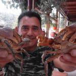 Karl und Krabben