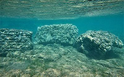 Υποβρύχια αρχαιολογική έρευνα Σητείας