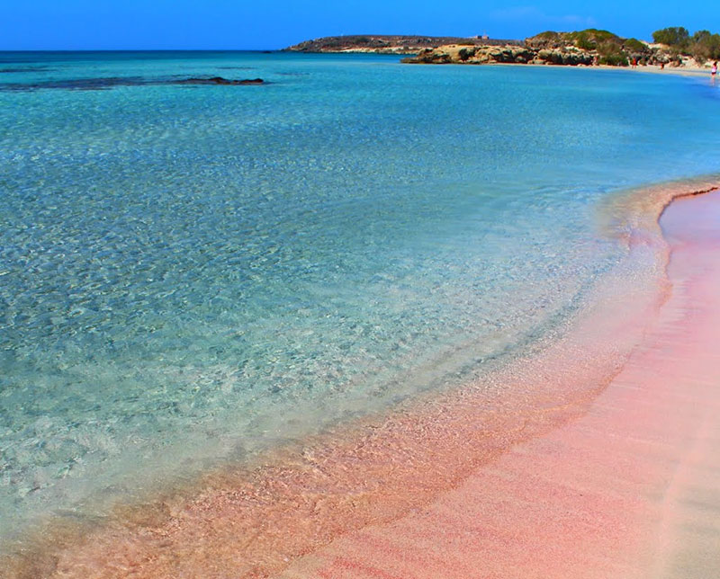 Elafonisi Beach The Amazing Pink Beach Of Crete