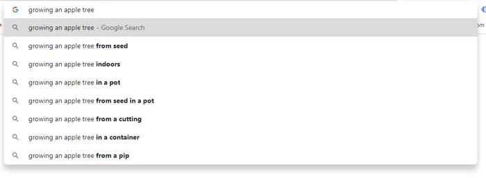Google drop-down Keyword Suggestions