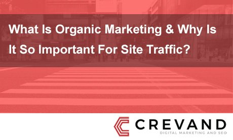 Benefits of Organic Traffic