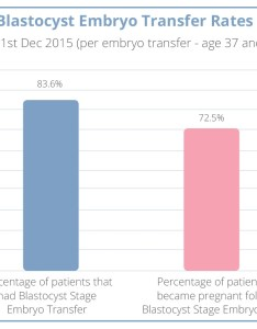 Crgh blastocyst embryo transfer rates chart also london rh