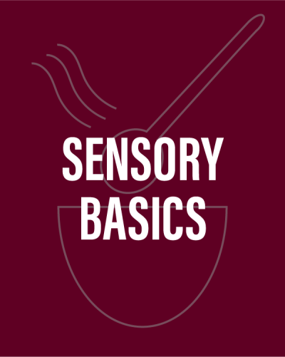 Learn sensory basics at the Coffee Roasting Institute!