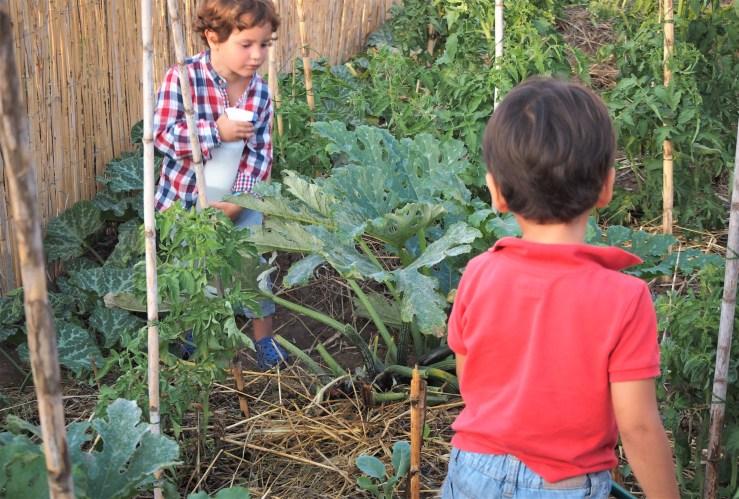 Niños cuidando el huerto ecológico