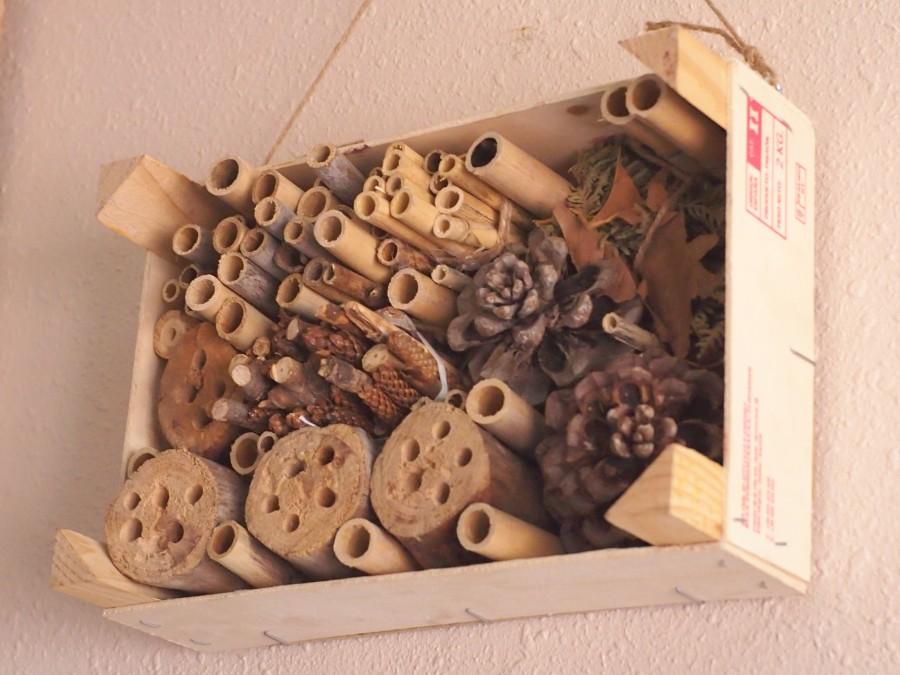 Foto del hotel de insectos en la caja de fresas donde se ven los diferentes tamaños de las cañas y demás componentes