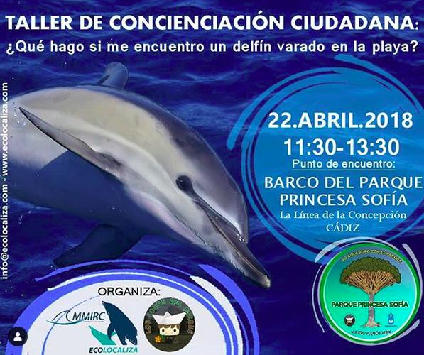 Cartel de una charla gratuita sobre que hacer si te encuentras un delfin en la playa