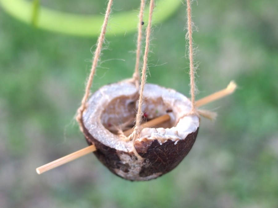 Cesta hecha de coco con palo atravesado para que coman mejor