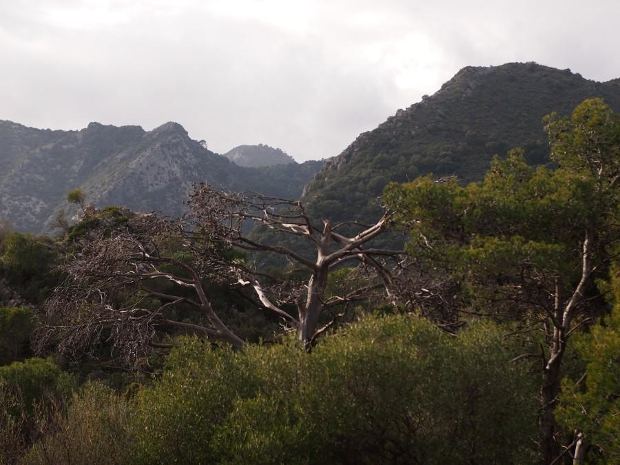 Paisaje desde lo alto de la reserva