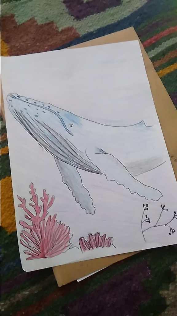 Dibujo hecho por mi hermana de una ballena