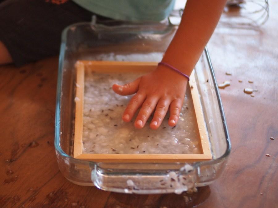 Manos de aplanado la masa de celulosa para hacer papel casero con semillas