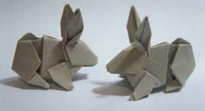 hsi-min tai rabbit coelho