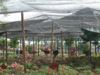 Garden Shade Pvc Pipe Shade Cloth Google Search Gardening ...