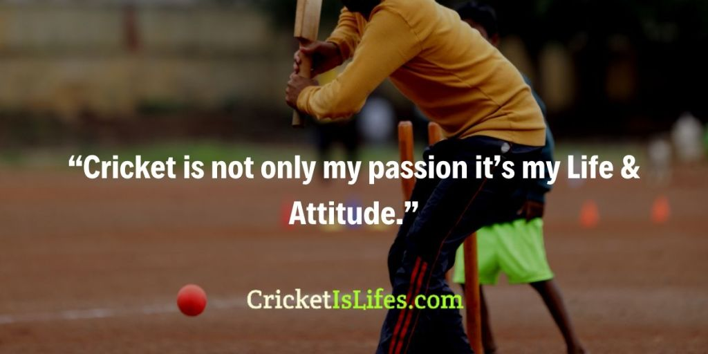 Cricket is not only my passion it's my Life & Attitude.