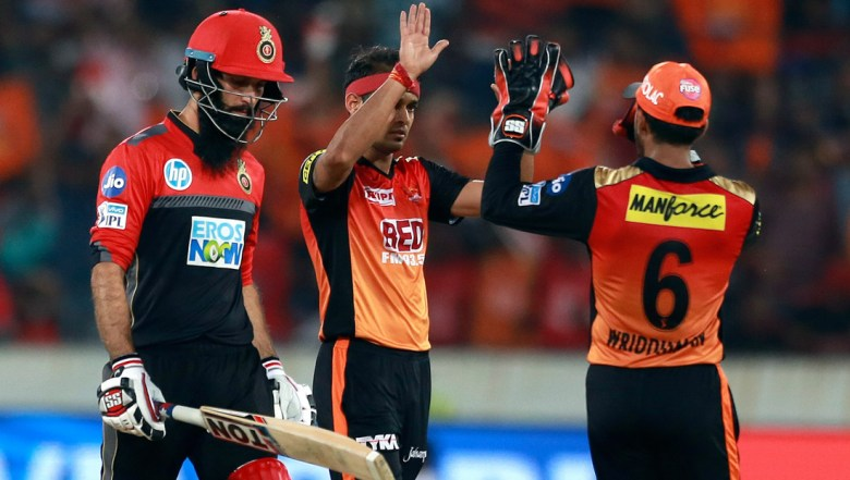 Sunrisers Hyderabad bowler Siddharth Kaurl, center, celebrates the wicket of Royal Challengers Bangalore's Moeen Ali