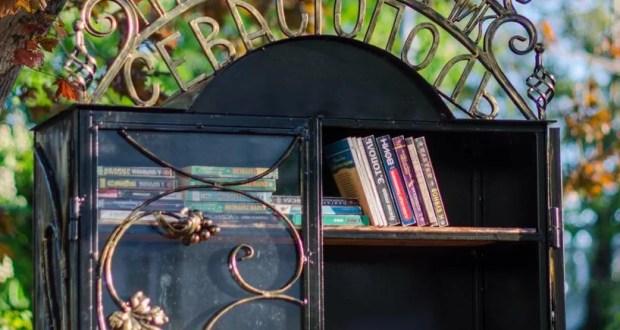 В Севастополе открыли «Приморский шкафчик»