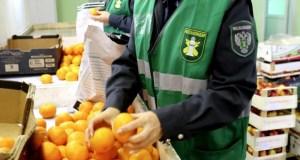 Россельхознадзор Крыма «завернул» на Украину почти 60 тонн продуктов