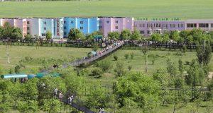 Названы причины смерти «работника-добровольца» в парке львов «Тайган»