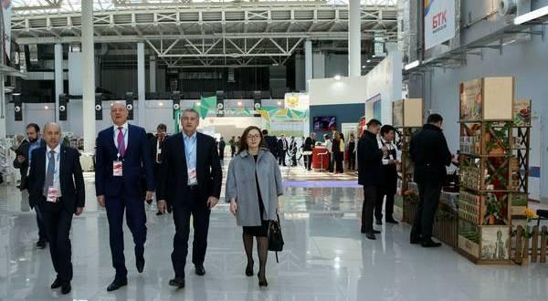От Сочинского инвестиционного форума к Ялтинскому экономическому