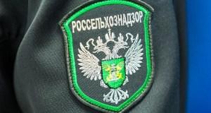 Росельхознадзор: Керченской паромной переправе необходим жёсткий мониторинг. Федеральный