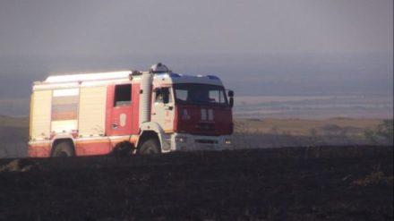 Жаркие дни крымских пожарных. Только на этой неделе потушено почти 300 загораний травы и деревьев