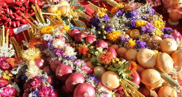 Фестиваль «Луко-Морье» в Крыму: презентация шестиметровой «лука-косы» и луковая ярмарка
