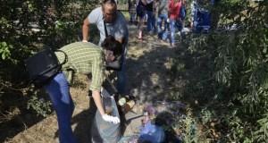 «ФеоЧисто» - новый экологический проект Феодосии