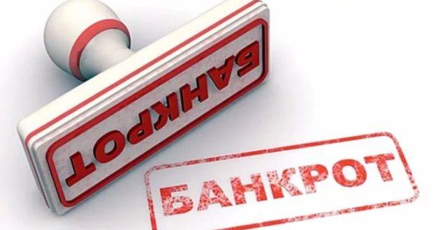 Сведения о юридическом лице, размещаемые на официальном сайте ФНС России, дополнены сведениями о возбуждении банкротства