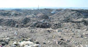 На свалке в Каменке поставят мобильный мусоросортировочный завод. На три года