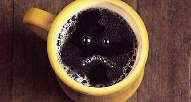 На набережной Салгира в Симферополе выпить кофе будет негде