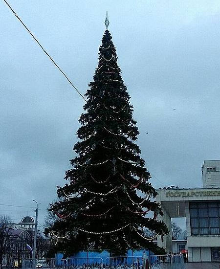 Главную ёлку Симферополя откроют в пятницу, 22 декабря