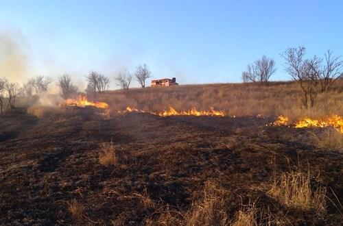 В Крыму горит сухостой