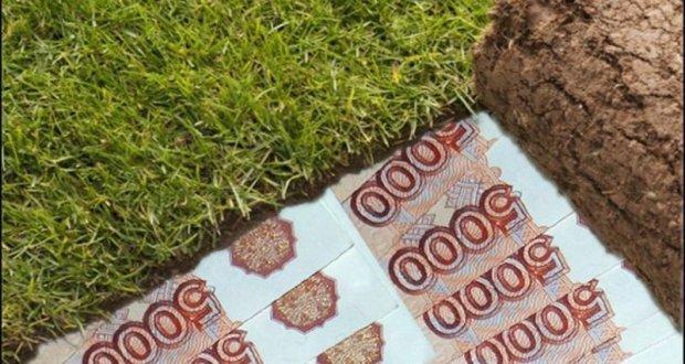 В Севастополе мягко наказали мошенниц, продававших фиктивные земельные участки
