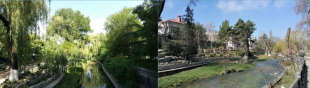 """Блогер Варламов о """"благоустройстве"""" и обрезке деревьев в Симферополе: кошмар и вредительство"""