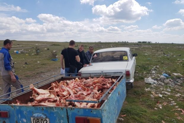 Подъездные пути к полигону ТКО в Каменке заблокируют