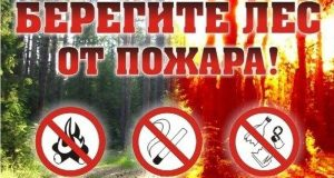 Экстренное предупреждение: 15 и 17 апреля в Крыму - пожароопасно!