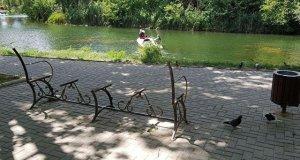 В симферопольском парке имени Гагарина неизвестные вандалы сломали скамейки