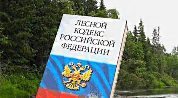Севастопольская прокуратура выявила нарушения в охране лесов от пожаров