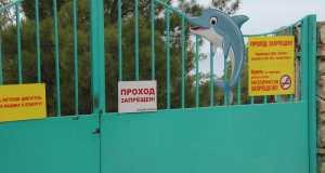 Суд запретил открывать севастопольский детский лагерь «Ласпи»