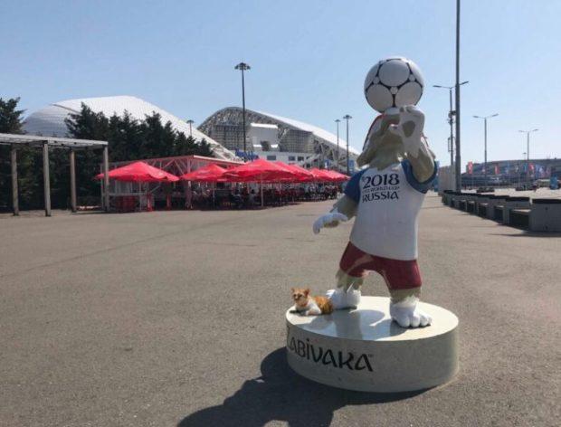 Приключения Кота Мостика на Чемпионате мира по футболу