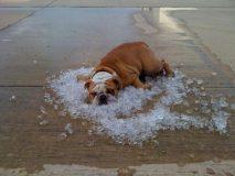 Погода в Крыму - жара в 30 градусов и выше