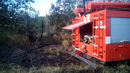 В Крыму – чрезвычайная пожарная опасность. Горят трава и кустариник