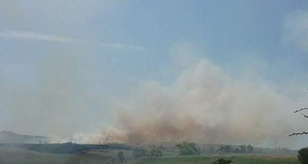 Лесной пожар в Ленинском районе Крыма