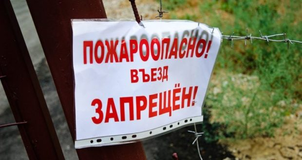 В Крыму введён запрет на посещение лесов. На три недели как минимум