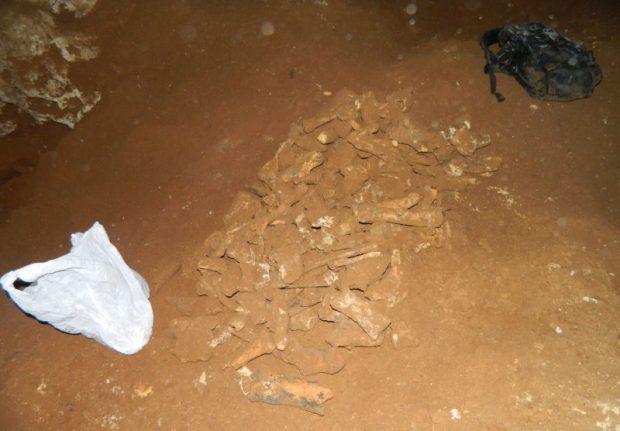 """В пещере, обнаруженной под трассой """"Таврида"""", следы человека не найдены"""