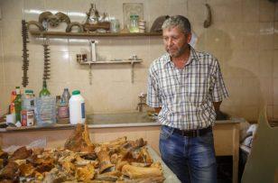 """Под трассой """"Таврида"""" учёные нашли логово диких древних зверей"""