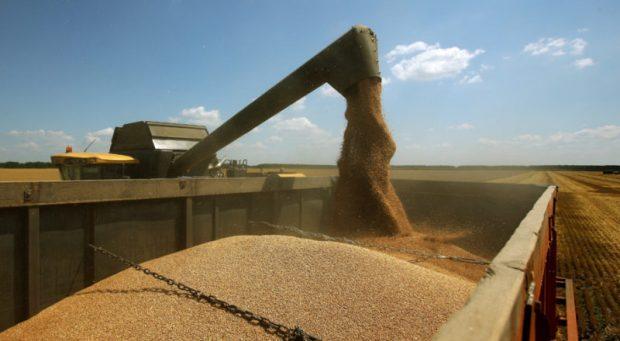 Минсельхоз РФ: в Крыму зерна достаточно