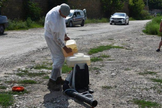 В Симферополе уничтожили 15 гектаров амброзии